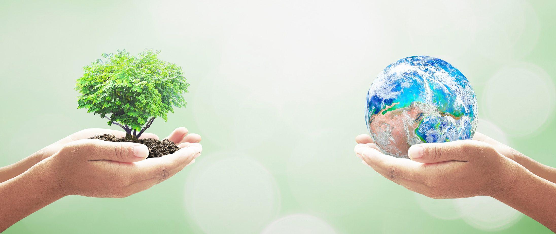 Ragionamento sull'ambiente per andare oltre il proprio giardino