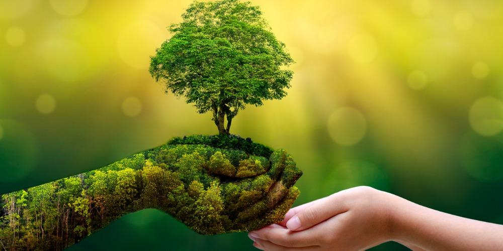 Una terza via per un ambientalismo di destra