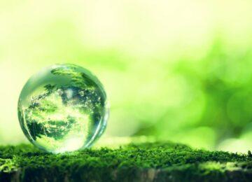Transizione ecologica? Sì, ma sostenibile per imprese e famiglie