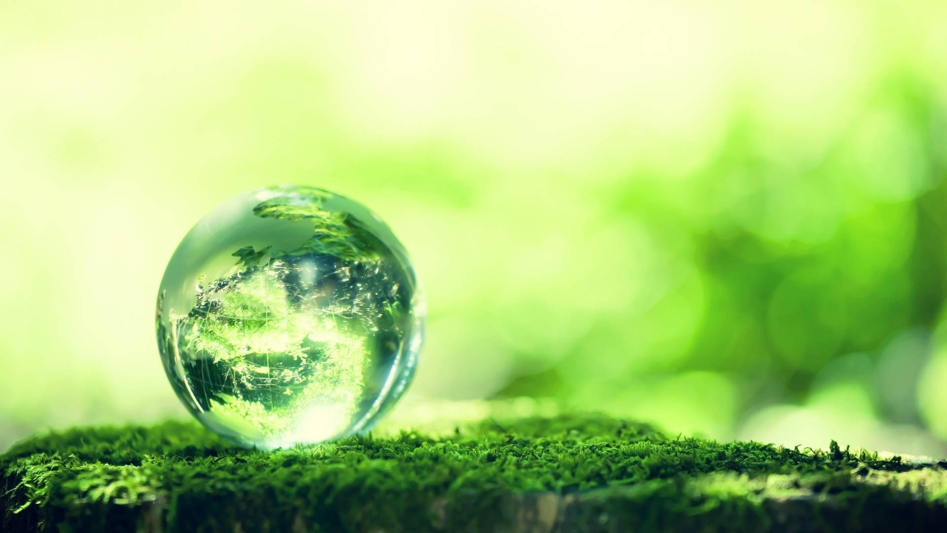 Destra e ambiente: prospettive per una nuova politica ecologica